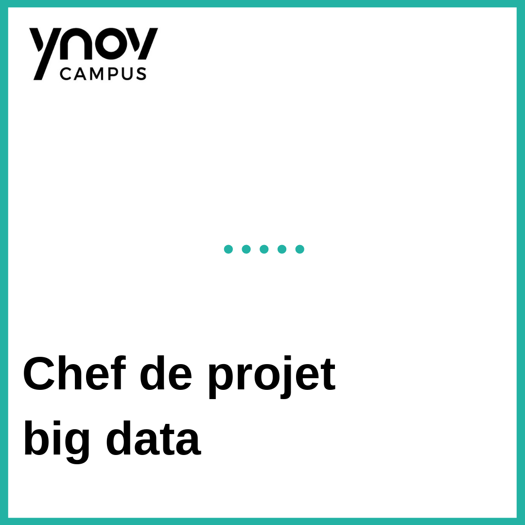 chef de projet big data